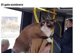 Enlace a Personas extrañas que puedes encontrarte en el transporte público de Lituania