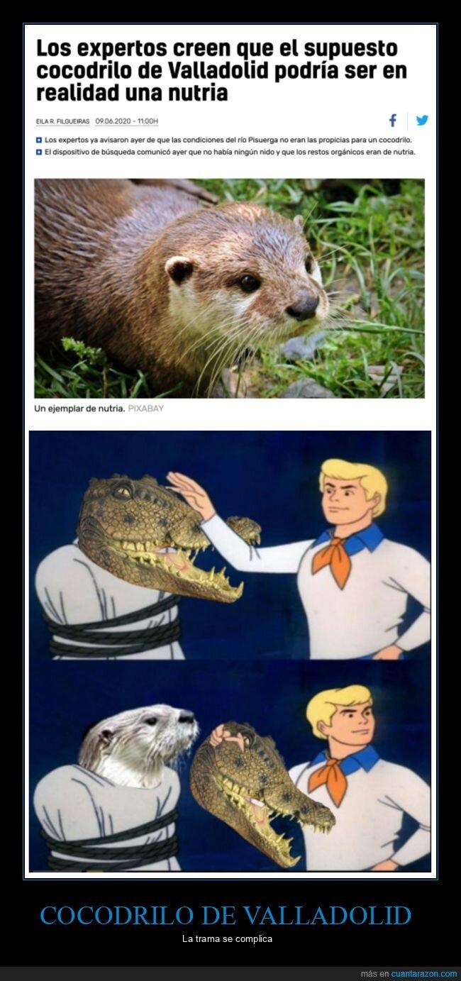 cocodrilo,nutria,valladolid