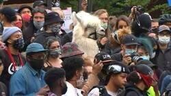Enlace a Alpaca concienciada con los problemas raciales