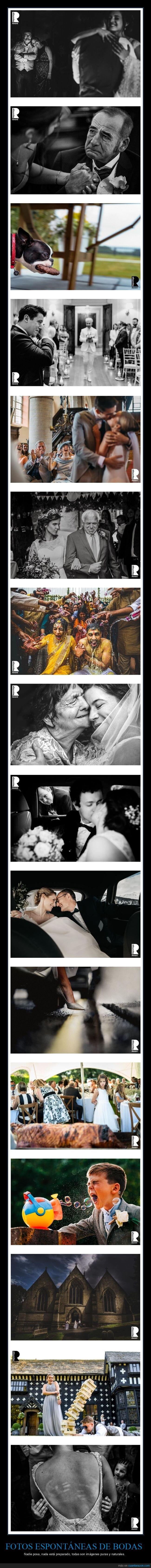 bodas,fotos espontáneas