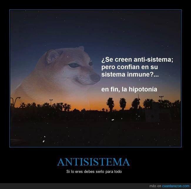 antisistema,hipocresía,sistema inmune