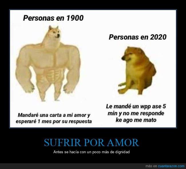 1900,2020,ahora,amor,antes,carta,doge y cheems,esperar,responder,respuesta,whatsapp