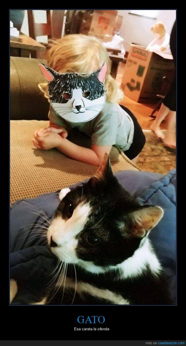 careta,gato,niño