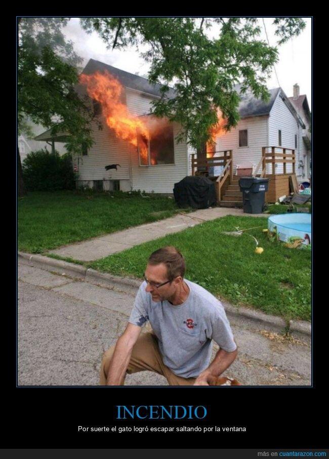 casa,escapar,gato,incendio,ventana
