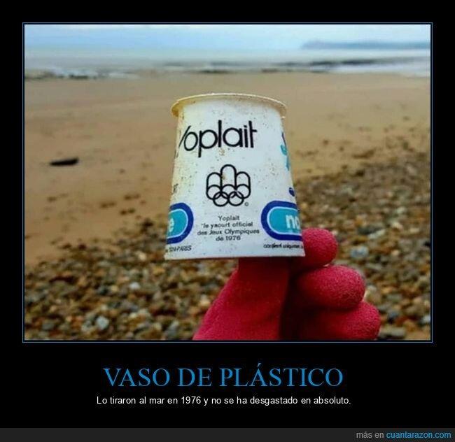 desgaste,mar,plástico,vaso
