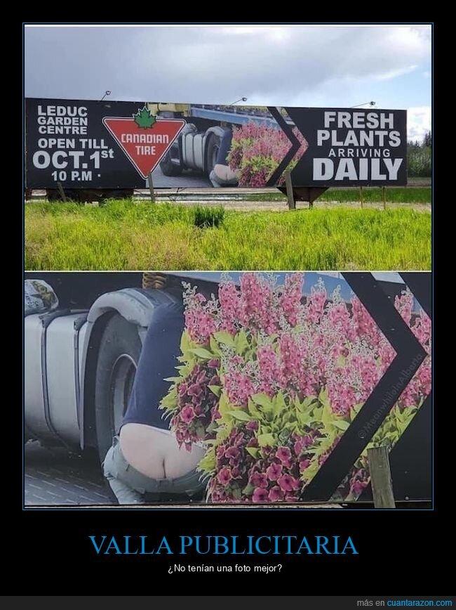 anuncio,culo,valle publicitaria,wtf