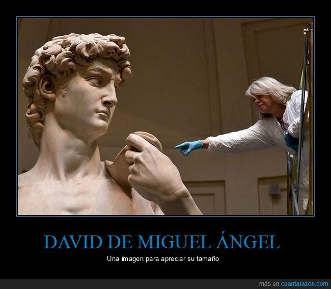 david,miguel ángel,tamaño