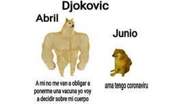 Enlace a Djokovic y el coronavirus