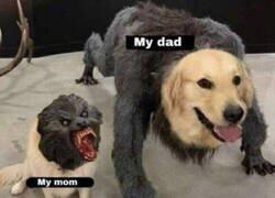 Enlace a Mi madre VS Mi padre