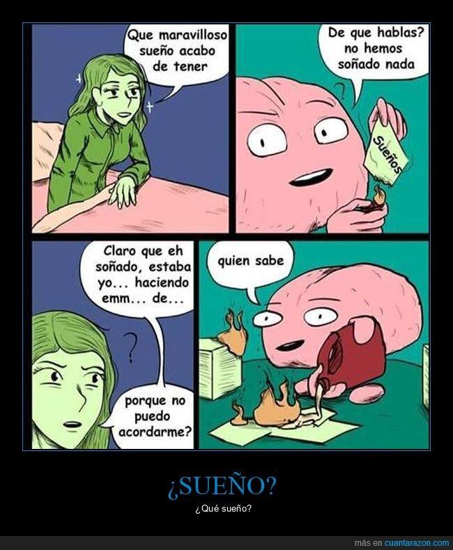cerebro,recordar,sueño