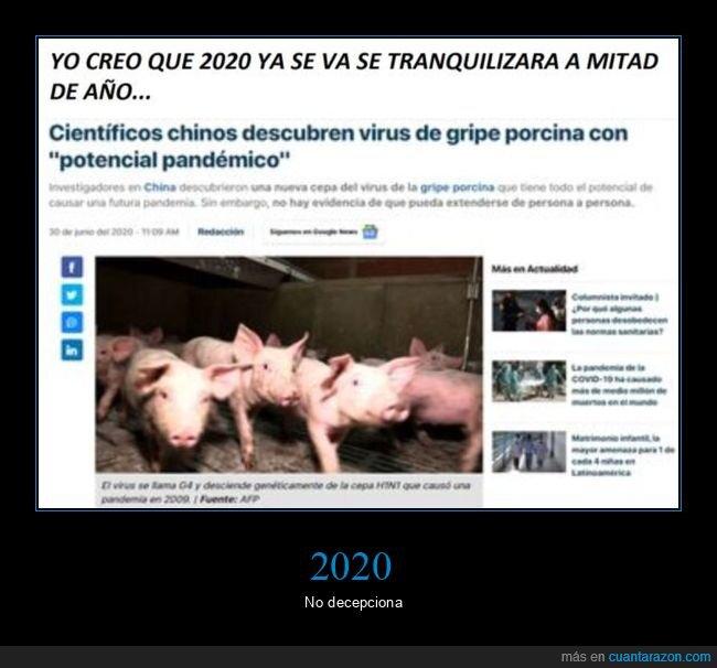 2020,coronavirus,gripe porcina,pandemia,virus