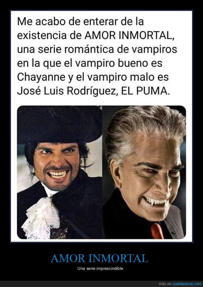 amor inmortal,chayanne,el puma,wtf