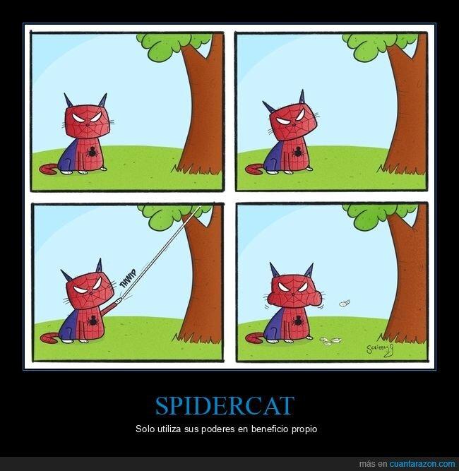 comiendo,gato,pájaro,spiderman