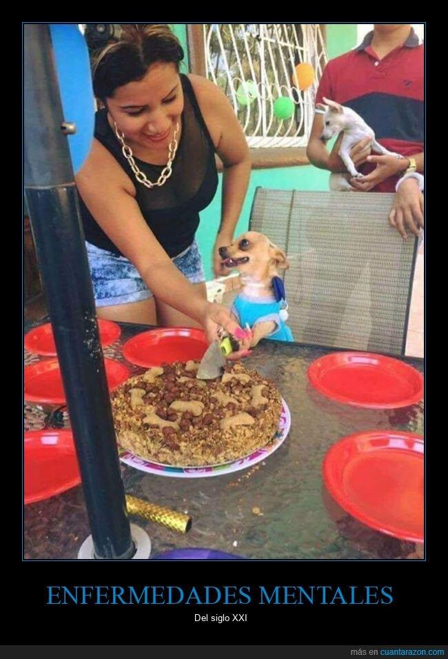 cortando,cumpleaños,enfermedad mental,perro,tarta