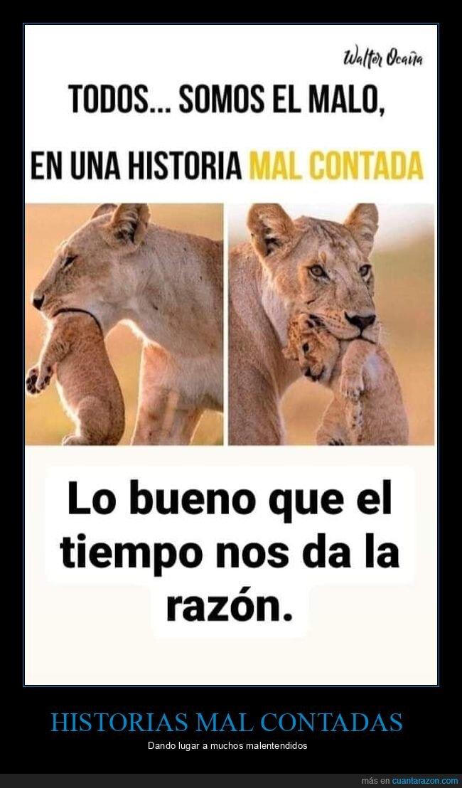 buenos,historias,leones,malos