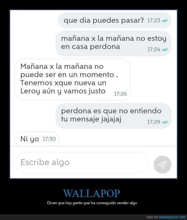 jungla,mensaje,wallapop