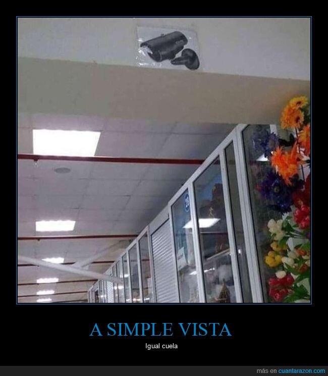 cámara,engaño,fake