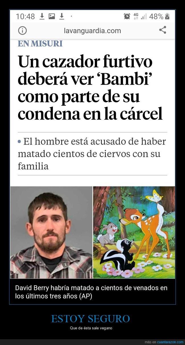bambi,cazador,condena,película,visionado