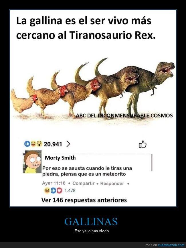 asustarse,dinosaurios,gallinas,meteorito,piedra,trex