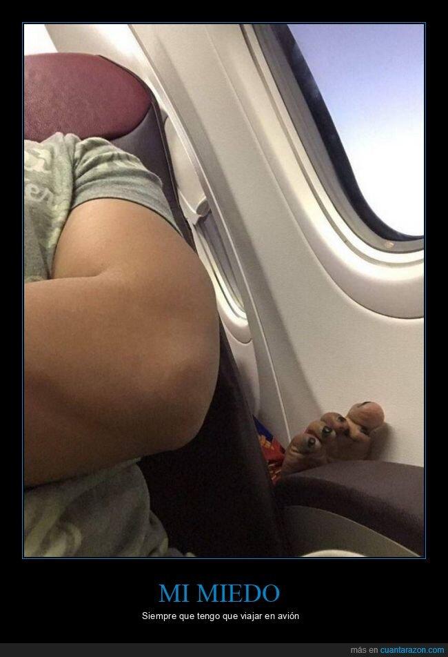 asco,asiento,avión,dedos,pezuñas