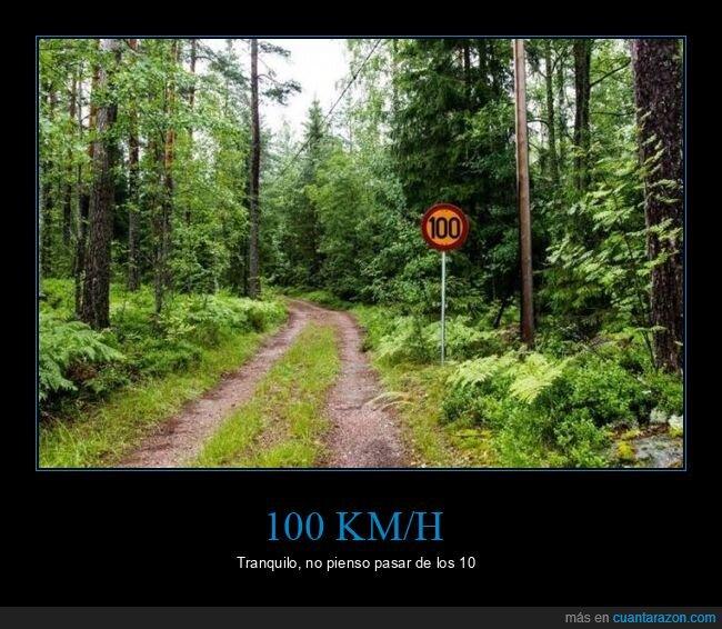bosque,señal,velocidad