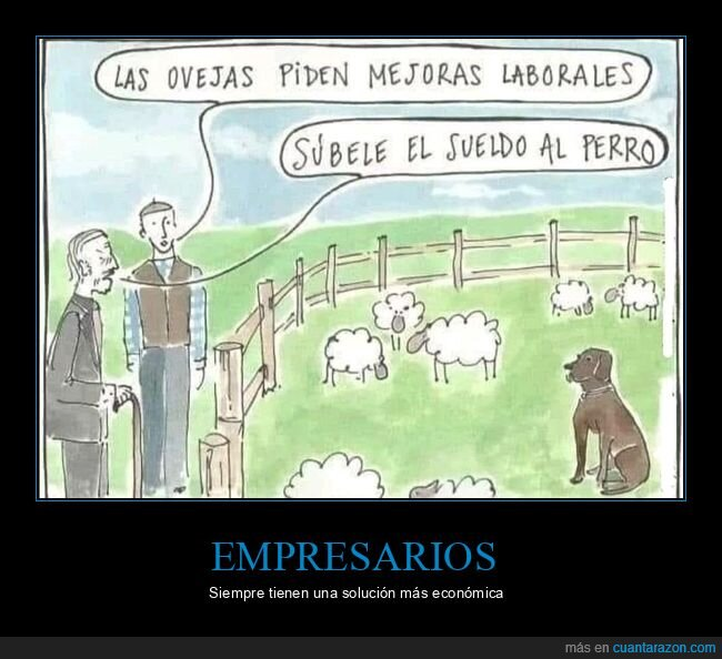 mejoras laborales,ovejas,perro,sueldo