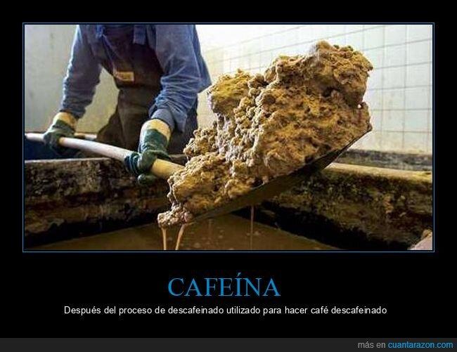 café,cafeína,descafeinado