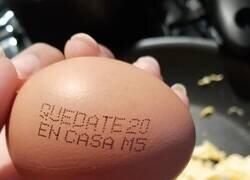 Enlace a Haz caso al huevo
