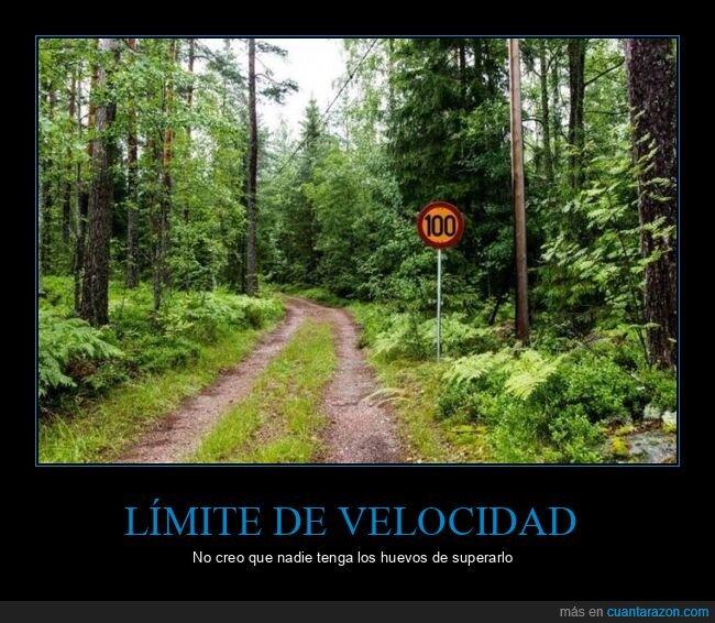 camino,límite de velocidad,señal