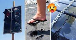 Enlace a Imágenes que muestran lo horrible del verano y te dará calor con solo verlas