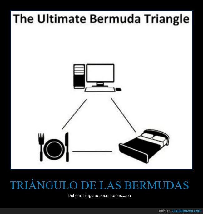cama,comida,ordenador,triángulo