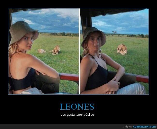 leones,wtf
