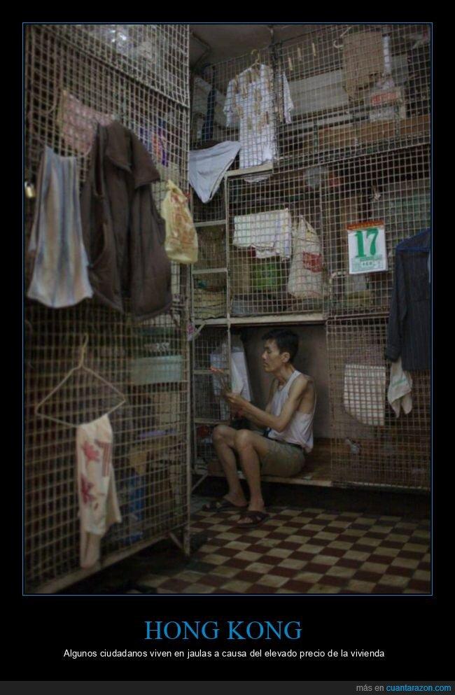 hong kong,jaulas,precio,vivienda,vivir
