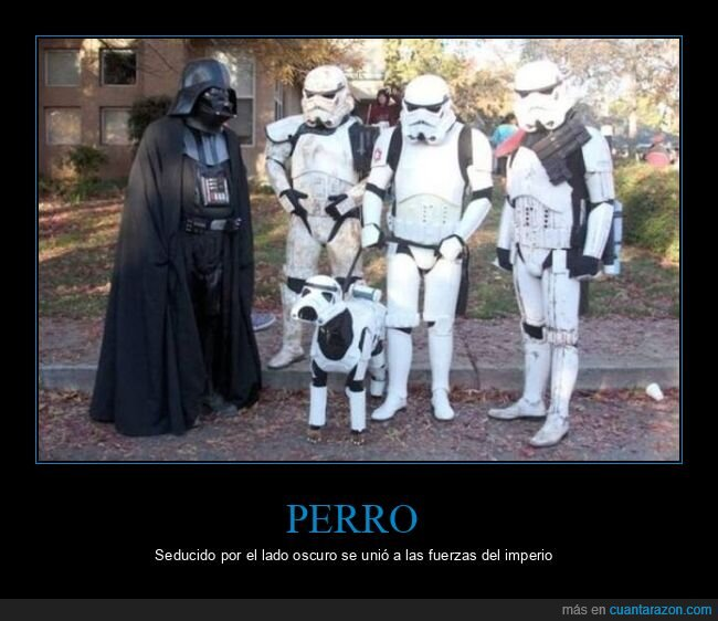 disfraces,perro,star wars