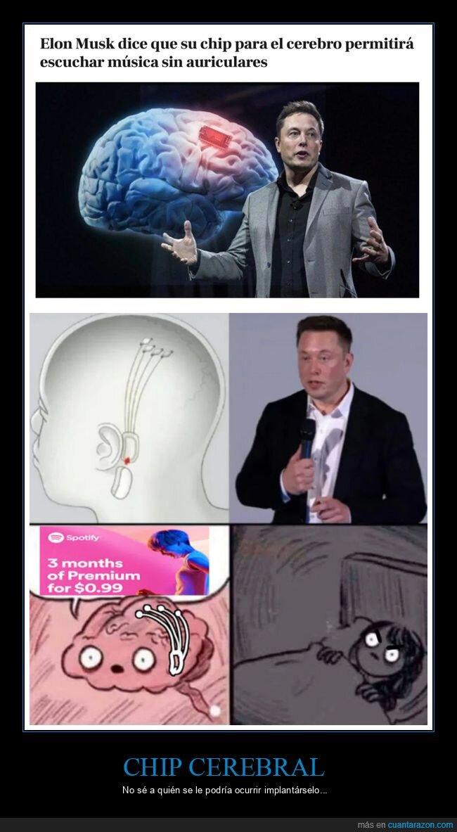 cerebro,chip,elon musk,música