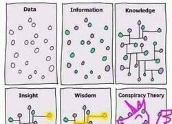 Enlace a Así manejan la información los conspiranoicos