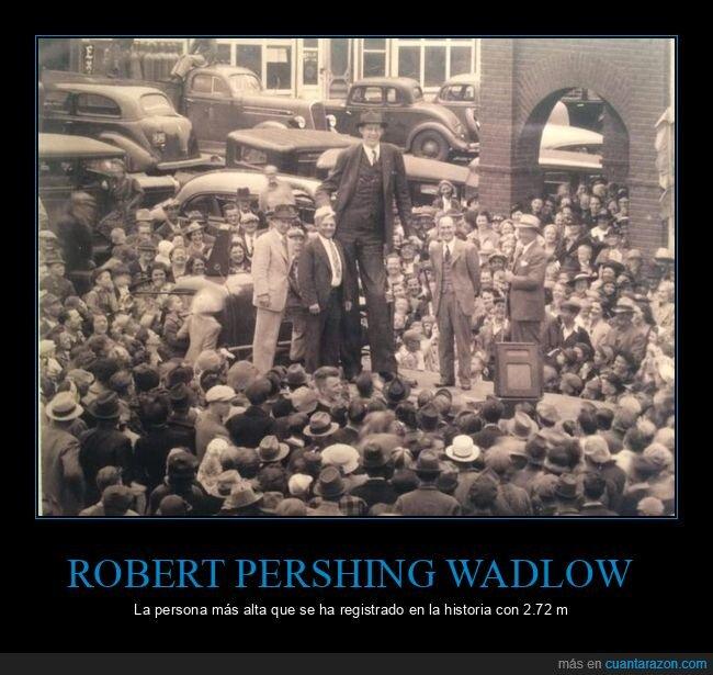 alto,curiosidades,estatura,robert pershing wadlow