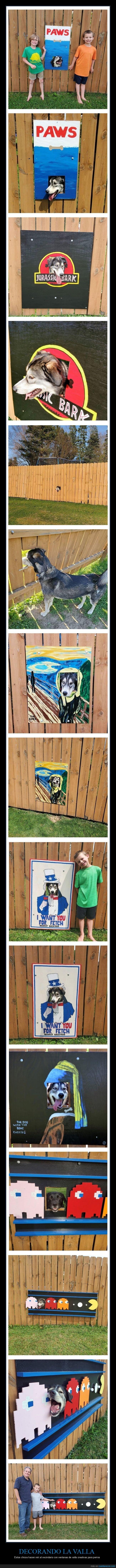 decorando,perros,valla,ventana