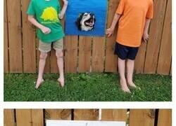 Enlace a Estos chicos hacen reír al vecindario con ventanas de vallas creativas para perros