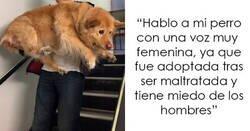 Enlace a La gente comparte cosas que sus mascotas les han condicionado a hacer accidentalmente