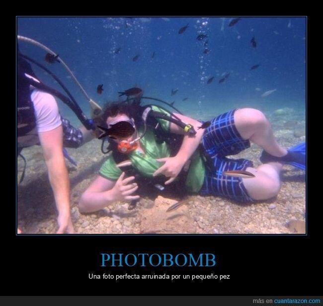 fails,pez,photobomb,submarinista