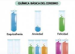 Enlace a Somos química