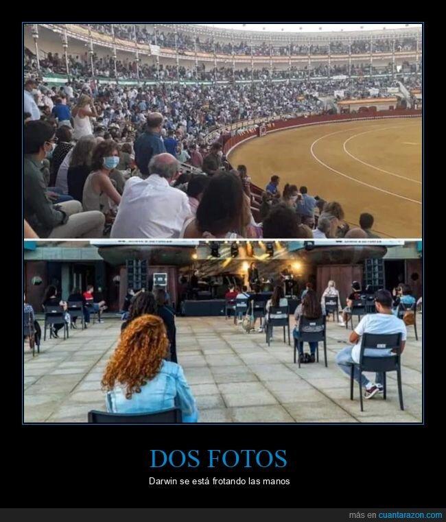 concierto,coronavirus,distancia social,toros,wtf