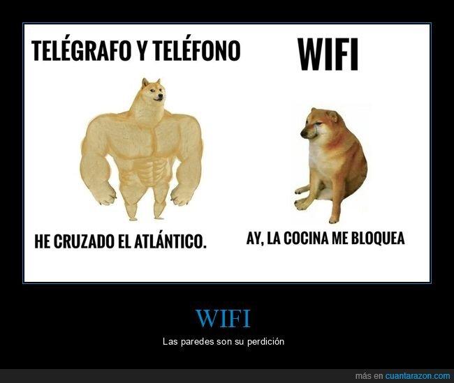 doge y cheems,teléfono,telégrafo,wifi