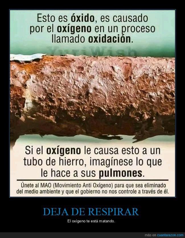 oxígeno,pulmones