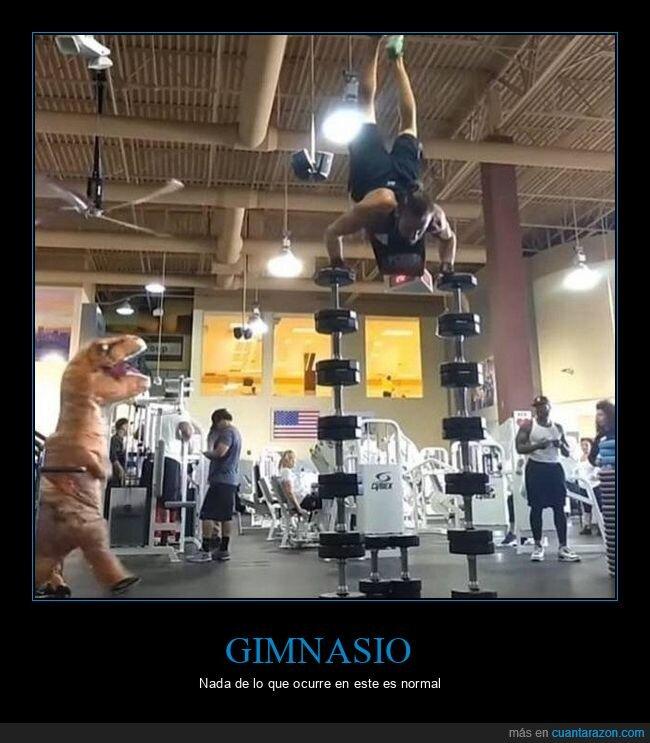 dinosaurio,equilibrio,gimnasio,pesas,wtf