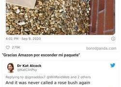 """Enlace a La gente muestra cómo los repartidores de Amazon """"esconden"""" sus paquetes"""