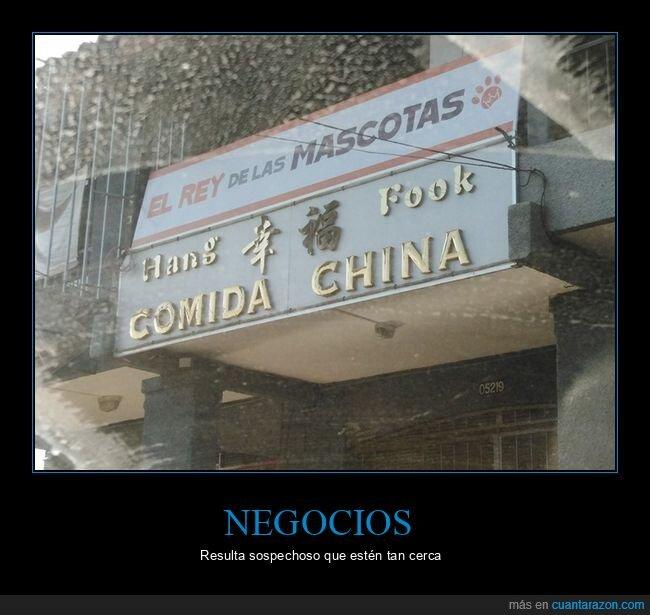 chinos,comida china,mascotas,wtf