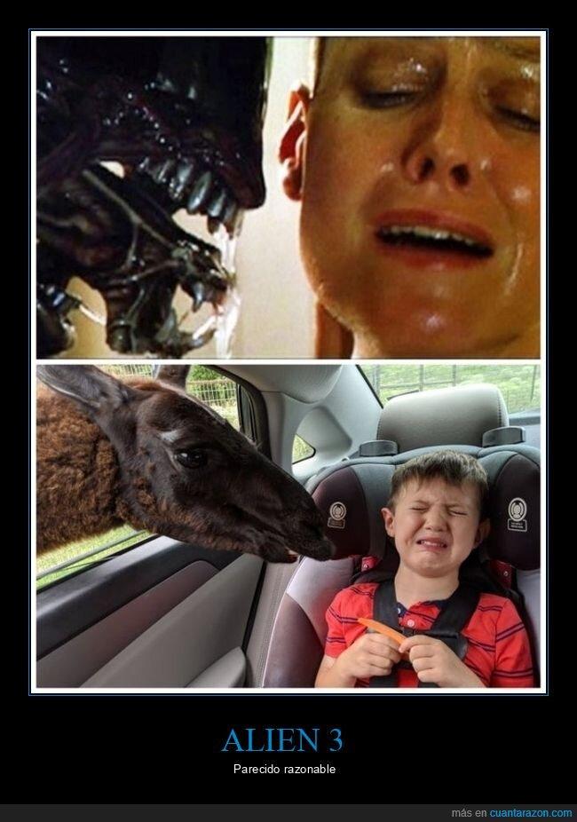 alien 3,miedo,niño,parecidos