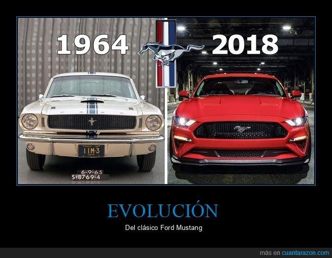 coches,evolución,mustang